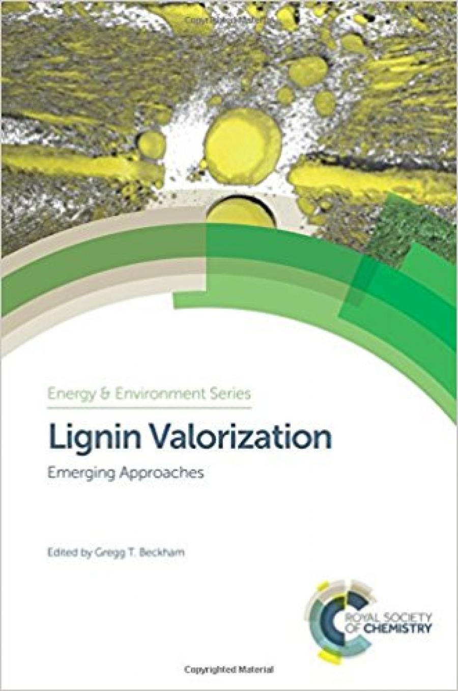 Lignin-Valoraization