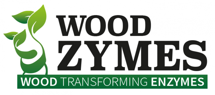logo_wz_m 2