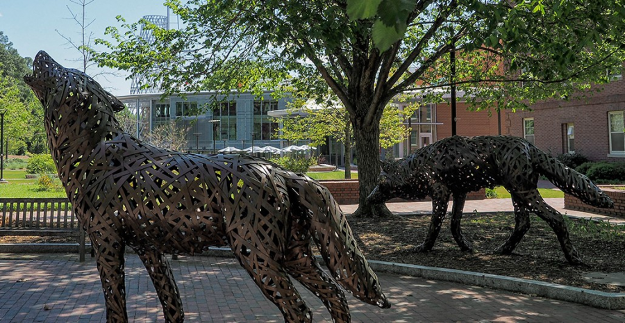 Campus_NC_State-2